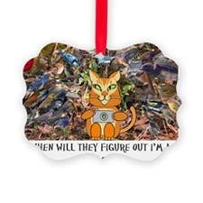 birding cat Picture Ornament