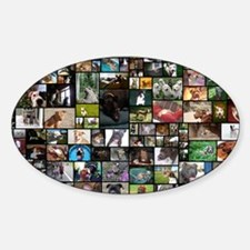 2012 Peoples Choice 17 x 11 Sticker (Oval)