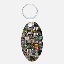 2012 Peoples Choice 23 x 35 Keychains