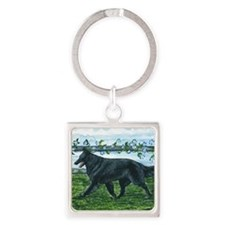 bel shep fence Square Keychain