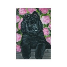 bel shep flower baby Rectangle Magnet