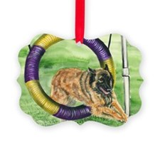 bel terv  agility Ornament