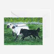 bel shep herd Greeting Card