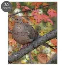 Dove2.34x3.2 Puzzle