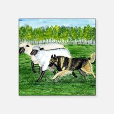 "bel terv herd Square Sticker 3"" x 3"""