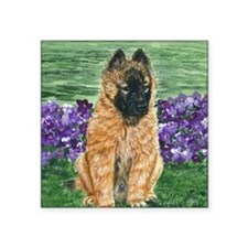 "bel terv pup Square Sticker 3"" x 3"""