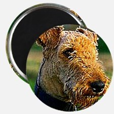Airedale Magnet