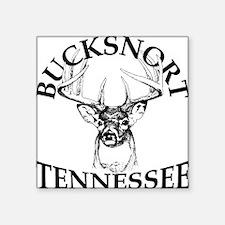 """20110518 - BucksnortTN Square Sticker 3"""" x 3"""""""