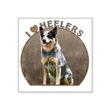 "blueheelerwh Square Sticker 3"" x 3"""