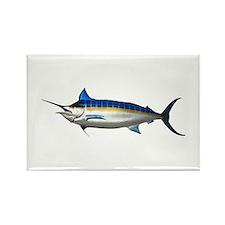 Blue Marlin Rectangle Magnet