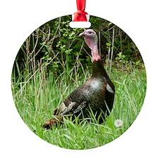 Tk4.25x4.25 Ornament