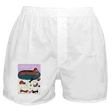 KnittingDachshundPoster Boxer Shorts