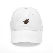 Diamondback Terrapin baby Baseball Cap