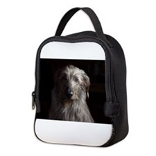 Artemis Neoprene Lunch Bag