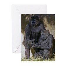 """Old Friends"" Greeting Cards (Pk of 10)"