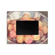 apricots Picture Frame