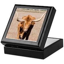 Longhorn Bull Keepsake Box
