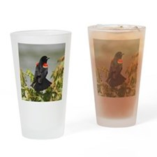 aEagles Redwings 678 tile Drinking Glass