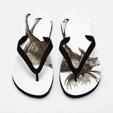 Moose-is-Loose-whtie Flip Flops