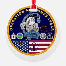 245543432 copy Ornament