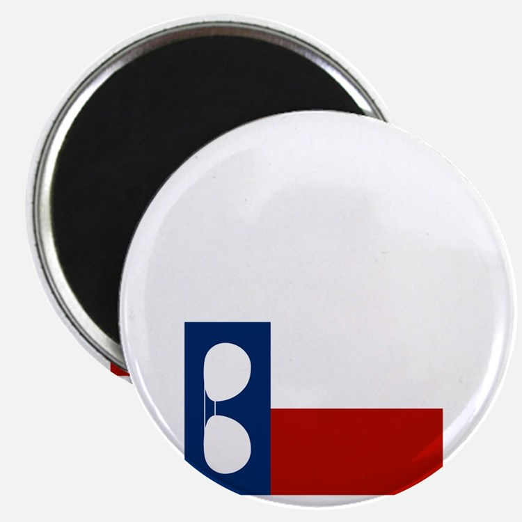 ray_wylie_sunglassesflag_center Magnet