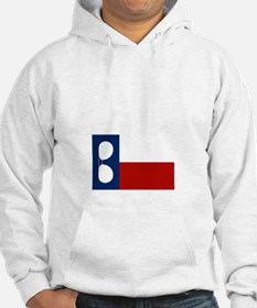 ray_wylie_sunglassesflag_center Hoodie