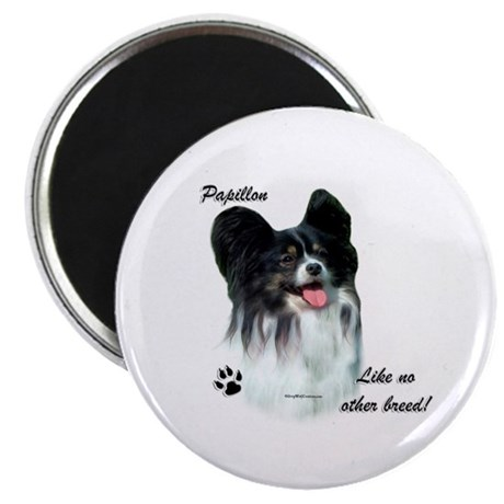Papillon Breed Magnet