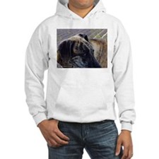 The Soul of a Sloughi Hoodie