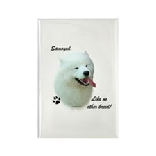 Samoyed Breed Rectangle Magnet