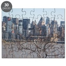 manhattan behind tree Puzzle