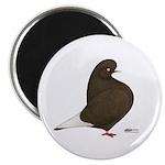 Brown Flight Magnet