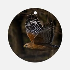 (4) Red Shouldered Hawk Flying Round Ornament