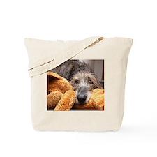 Jadzia and her stuffy Tote Bag