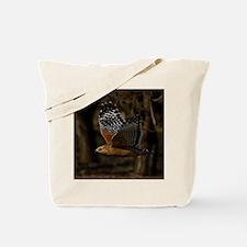 (15) Red Shouldered Hawk Flying Tote Bag