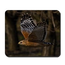 (15) Red Shouldered Hawk Flying Mousepad