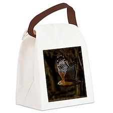 (14) Red Shouldered Hawk Flying Canvas Lunch Bag