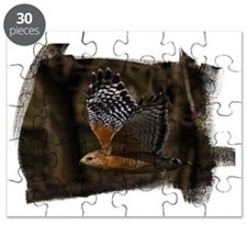 (16) Red Shouldered Hawk Flying Puzzle