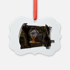 (16) Red Shouldered Hawk Flying Ornament