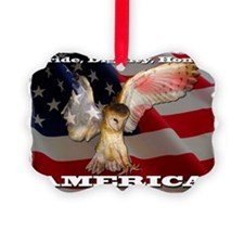 4D5Q2378 American Barn Owl SF Ornament