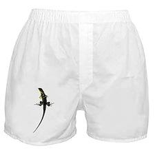 boca 112 (26) Boxer Shorts