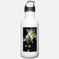 iphone 4g Water Bottle