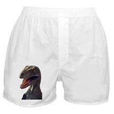 raptor Boxer Shorts