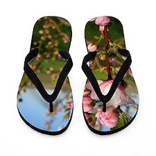 Blossom Flip Flops