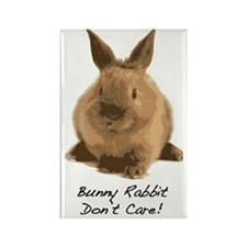 Bunny Rabbit Dont Care! Rectangle Magnet