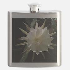 epiphytelg Flask