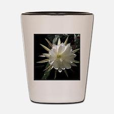 epiphytelg Shot Glass