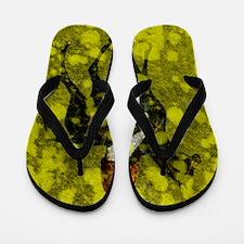 preakness n Flip Flops