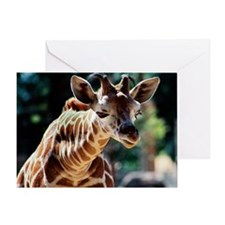Curious Baby Reticulated Giraffe Greeting Card