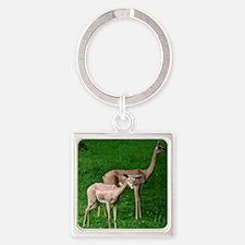 Two Gerenuk Antelope Square Keychain