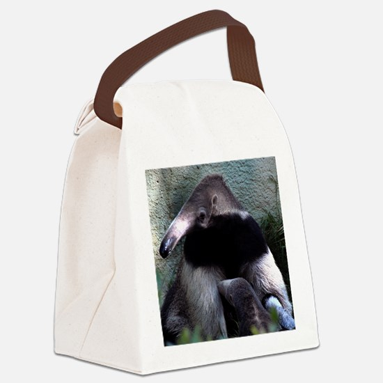 Mother Anteater nursing her young Canvas Lunch Bag
